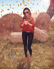 The air is wild with leaves (Ayumi Cassini) Tags: ison blueberry tetra minimal livia bueno magicnook doux emarie reign lap secondlife