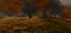 three landscapes 2/3 (s t o y a) Tags: secondlife landscape nature autumn