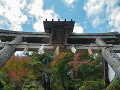 Mosaic (somazeon) Tags: f28 1235mm gx7 lumix panasonic cloud sky autumn gate shrine torii