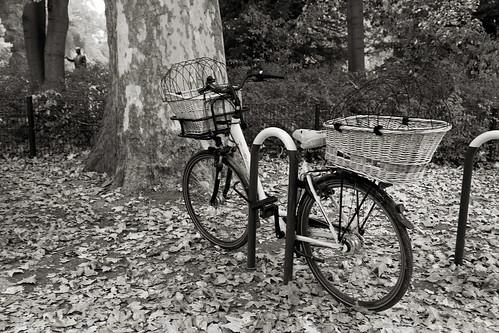 Parked Bike _8766