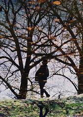 * (PattyK.) Tags: snapseed nikond3100 ioannina giannena giannina epirus ipiro balkans hellas ellada greece grecia griechenland november autumn ιωάννινα γιάννενα ήπειροσ ελλάδα βαλκάνια νολεμβριοσ φθινόπωρο κόντσικα εξοχή φύση nature kontsika countryside naturephotography reflection water αντανάκλαση νερό