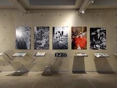 Niki de Saint Phalle @ Museum Beelden aan Zee (milov) Tags: nexus5x phonecam denhaag thehague museum beeldenaanzee exhibition nikidesaintphalle art sculpture