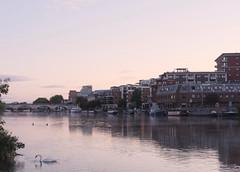 IMG_20190902_203550 (desdeelite) Tags: cityscape sunrise urban swan wildlife morning architecture bridges fujifilm fujixpro1 fujixf35mmf2 riverside