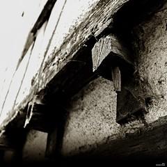 Être charpentier. (Un jour en France) Tags: canoneos6dmarkii canonef1635mmf28liiusm eos carré square noiretblanc noiretblancfrance sepia wood frame
