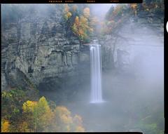 Taughannock Fog (AlexBurke) Tags: landscape 4x5 fog velvia new york waterfall film autumn fall drum scan finger lakes