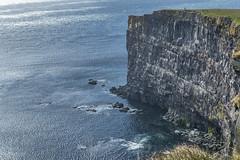Edge of the world (Al Case) Tags: iceland latrabjarg nikon d500 nikkor 1680mm al case landscape látrabjarg cliff atlantic ocean hvallátur denmark strait westernmost tip point westfjords