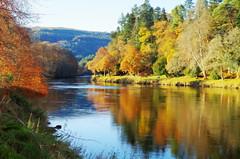 Autumnal river Tay (eric robb niven) Tags: ericrobbniven scotland dunkeld perthshire landscape springwatch
