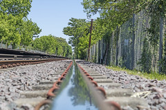 Railway line (Wal Wsg) Tags: railwayline onthetracksoftheurquizalinerailway ferrocarrilargentino ferrocarril vias viasdeltren trenurquiza argentina buenosaires caba capitalfederal ciudaddebuenosaires agronomia phwalwsg photography photo foto fotografia fotocallejera canont6i canonesorebelt6i canon dia day trains trenes outside