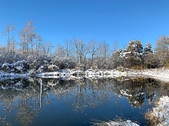 Reflections on Autumn (Haytham M.) Tags: branches scenery snow day cold crisp clear canada ontario sharp blue sky morning winter early autumn fall reflections pond forest trees