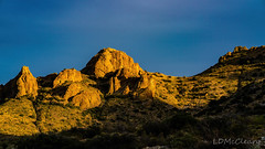 Golden Hour in Florida Mountains (LDMcCleary) Tags:
