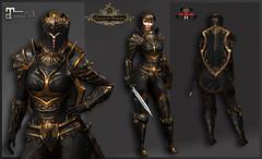 TSC Battle Paladin (Maitreya BENTO) (Topa Adamski) Tags: armor knight bento secondlife warrior paladin substancepainter zbrush
