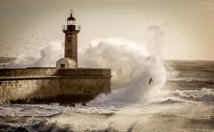 Fury (Artur Tomaz Photography) Tags: action farol felgueiras lighthouse nature ocean oporto outside sea seagull storm water weather