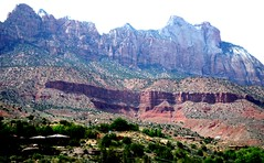 Springdale, Utah (thomasgorman1) Tags: utah canyon desert mountains samsung scenic travel springdale trees landscape