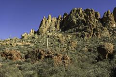 Arizona landscape along the Apache Trail, Arizona (TAC.Photography) Tags: 2019 arizona allofarizonaphotography arizonapassages saguaro cactus apachetrail