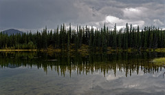 Reflections of Forest of Trees (Denali National Park & Preserve) (thor_mark ) Tags: alaska2019 alaskarange alaskayukonranges alonglakeshore azimuth142 clouds cloudy colorefexpro day4 denalinationalparkpreserve denalinationalparkandpreserve dxophotolab3edited evergreentrees evergreens glasslikereflections hillsideoftrees horseshoelake horseshoelaketrail imagecapturewitharsenal lake lakereflectionsonwater landscape lookingse mostlycloudy mountains mountainsindistance mountainsoffindistance nature nikond800e outside overcast pond project365 ridgeline reflections reflectionsonlake reflectionsonpond reflectionsonwater ridge ridges rollinghillsides treereflections treereflectionsonwater trees waterreflections westcentralalaskarange witharsenal alaska unitedstates