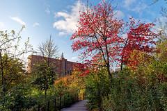 Cormailles park (hbensliman.free.fr) Tags: travel suburb landscape france paris architecture park garden pentax pentaxart pentaxk1 outdoor outside