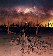 Milky Way setting over Yenyening Lakes, Western Australia (inefekt69) Tags: yenyening lakes salt lake dead trees panorama stitched mosaic ms ice milky way cosmology southern hemisphere cosmos western australia dslr long exposure rural night photography nikon stars astronomy space galaxy astrophotography outdoor core great rift ancient sky d5500 landscape nikkor prime beverley wheatbelt 50mm ioptron skytracker hoya red intensifier milkyway