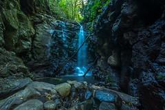Box Log Falls (agasfer) Tags: 2019 australia lamington national park hiking waterfalls pentax k3 sigma1020 cottoncandy