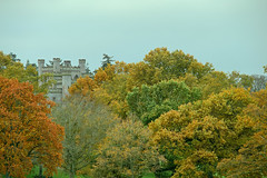 Lowther Gold (vincocamm) Tags: lowther lowthercastle cumbria westmorland castle trees autumn orange gold green brown