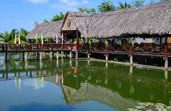 82175-Mekong