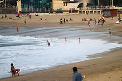 Setembre_0527 (Joanbrebo) Tags: zurriola playa platja beach plage gente gent people sansebastián donostia guipúzcoa paísvasco españa canoneos80d eosd autofocus