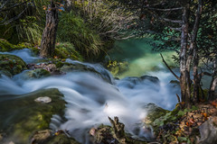 Follow the current (Sizun Eye) Tags: plitvice plitvicelakes naturereserve nature unesco stream current waterfall lake le longexposure croatia sizuneye sonyfe1635mmf28gm sony7rm2 sony nisifilters