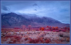 1050. Eastern Sierra Nevada 60 (Oscardaman) Tags: kolariirchromeforinquiresaboutanyofmyphotos pleaseemailmeatoscarwitzgmailcom 1050 eastern sierra nevada 60