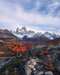 The Arrival (Maddog Murph) Tags: patagonia fitz roy el chalten fall autumn day light tree ice clouds nature orange blue crag jutting peak