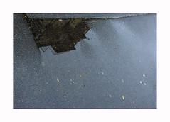 Paysage d'automne (hélène chantemerle) Tags: ville rue sol pluie reflet lumière city street soil reflection light