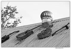 _D713137 (allan_s_jackson) Tags: brisieshops roofs waterworksroad