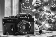 The Tool Kit - 2019 - Minolta XE-7 (Alex Luyckx) Tags: camera gear sony sonya6000 a6000 icle6000 fotodiox aisnikkor105mm125 minolta minoltaxe7 xe7 slr 135 35mm film filmcameras believeinfilm filmisalive filmisnotdead