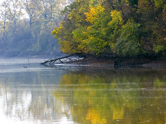 Fall reflections (Dumby) Tags: landscape ilfov românia lake autumn fall nature outdoor