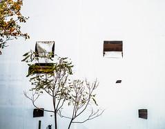 Dialogue.jpg (Klaus Ressmann) Tags: omd em1 fparis france klausressmann winter cityscape constructionsite design flccity screen trees omdem1