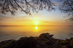 Morning Calmness (Jens Haggren) Tags: morning calmness sun sunrise sunlight sky water sea seascape seaside trees nature scenery colours composition birds landscape reflections serenity nacka sweden jenshaggren
