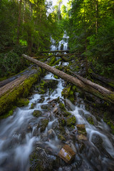Upper Proxy Falls, OR (Mike Ver Sprill - Milky Way Mike) Tags: upperproxyfalls oregon landscape nature lush gree foliage trees logs forest woods wildernes rushing water river stream creek rocks national park beautiful scenic scenery surreal
