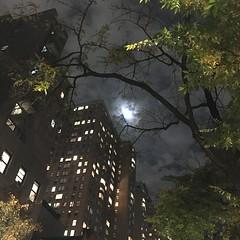 (michel banabila) Tags: evening fullmoon newyork city usa