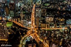 Traffic Star (Eli Goren) Tags: tokyo 2019 traffic star eligoren אליגורן night light road
