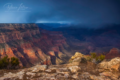 Yaki Point Snow Storm (Where The Trails Take You Photography) Tags: yakipoint snowstorm autumn canyon steep dramatic weather nationalpark southrim grandcanyon canon arizona november wherethetrailstakeyouphotography canonef24105mmf4lisusm 24105mm 5dmkii