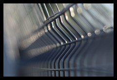 bent by design (pete ware) Tags: fence metal bendinthewire peteware fencedfriday hff nikond7000 archive