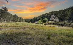 87 Bivens Road, Laguna NSW