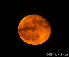 November 13, 2019 - The full beaver moon. (Bill Hutchinson)