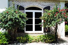 Best Glass Window Contractor In Marco Island & Naples-USA (guardianhurricane5) Tags: glass window repair glasswindowrepair