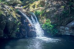 Kalbamahla Falls (agasfer) Tags: 2019 australia lamington national park hiking waterfalls pentax k3 sigma1020