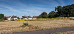 The Yellow Fence (M C Smith) Tags: pentax k3 grass openspace forest fence yellow walthamstow upperwalthamstow snaresbrook trees houses post flats sky blue white clouds weeds red brown path pavement lamps construction work lines