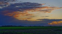 De la fumée vers le nuage… (mifranc91) Tags: nikon z6 2470 ciel nuages sky clouds light lumière soleil sun champ fumée smoke paysage landscape