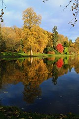 Reflecting on autumn (myraemery) Tags: autumn nationaltrust trees reflections lake landscape leaves light water stourhead gardens walk wiltshire sky sun views canoneos70d uk