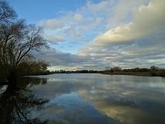 Reflets de nuages dans le romelaëre.Le marais audomarois. (daviddelattre) Tags: natue paysage photo arbre eau nuage reflet bleu