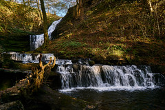 Scaleber Force (scottprice16) Tags: england yorkshire northyorkshire yorkshiredalesnationalpark settle scaleberforce scaleber waterfall waterfalls foss cutting valley trees autumn light shade colour 2019 october water falling running illumination nature beautiful peaceful moss leaves sony sonya6000 zeiss1670mmf4 tripod outdoors