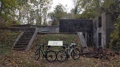2019 Bike 180: Day 172 - Battery Robinson (mcfeelion) Tags: cycling bike bicycle bike180 2019bike180 forthuntpark forthuntva autumn