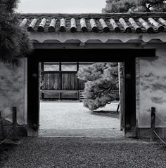 Through the gateway (Tim Ravenscroft) Tags: gate gateway nijo castle nijocastle courtyard architecture monochrome blackandwhite blackwhite kyoto japan hasselblad hasselbladx1d